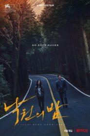 Night in Paradise – Noapte în paradis (2020)