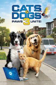 Câini și pisici 3: Lăbuțele unite Film online