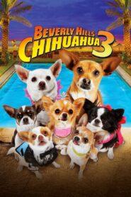 Beverly Hills Chihuahua 3 – Viva La Fiesta! Film online
